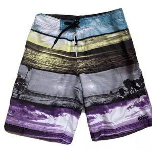 Nike 6.0 swim trunks palm tree ocean board shorts